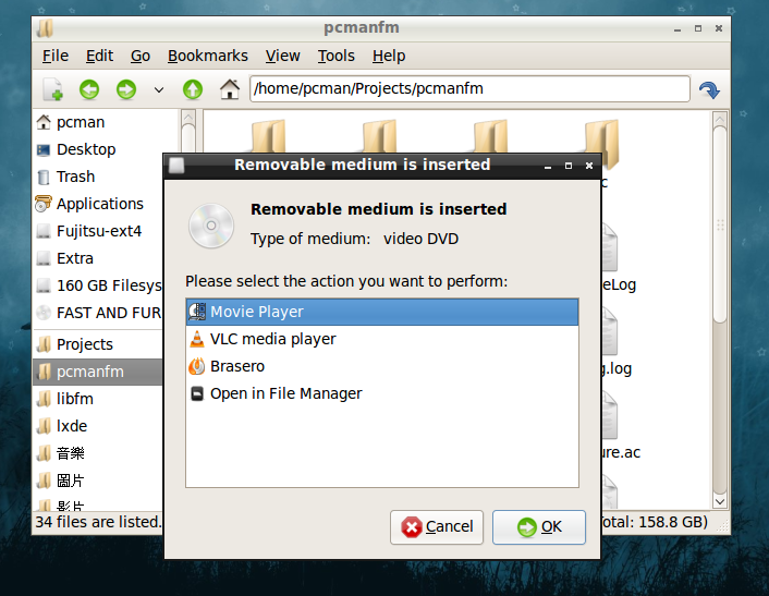 Auto-run dialog of pcmanfm
